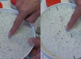 Voordelen van zelfherstellend biologisch beton
